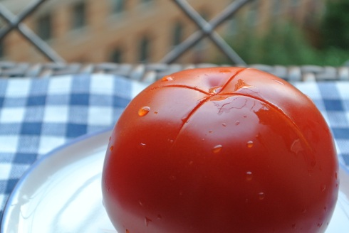 Tomato with X