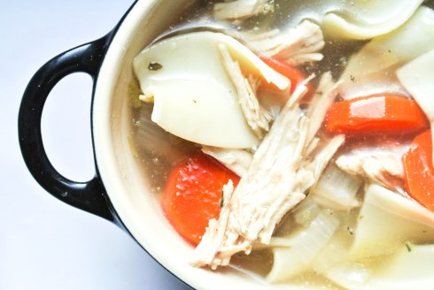 Healthy Chicken Noodle Soup-5